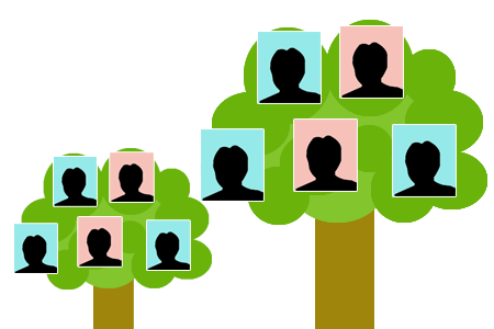 HelenKegieCollection - Family Trees
